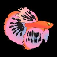 :Aquarium8:
