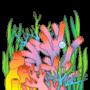 :Aquarium21: